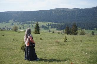 Travnik3